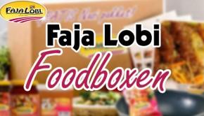 faja lobi maaltijdbox